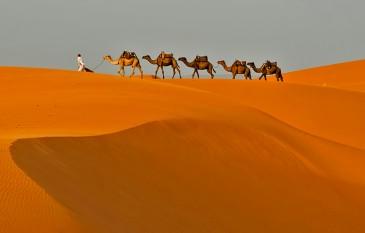 Sáhara Marroquí