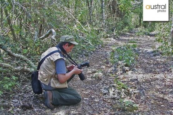 Albert Masó, fotógrafo de National Geographic te acompaña en este viaje a Kruger
