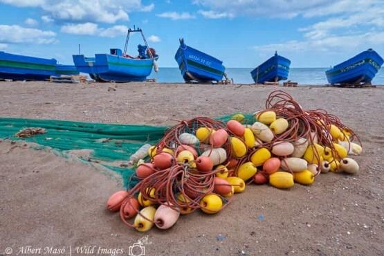 Viaje fotográfico al norte de Marruecos