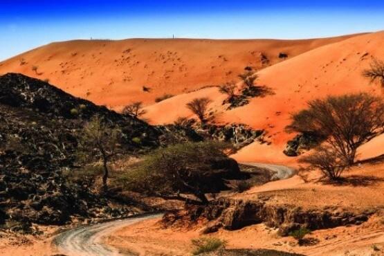 Desierto en Fujairah -viaje a medida Emiratos
