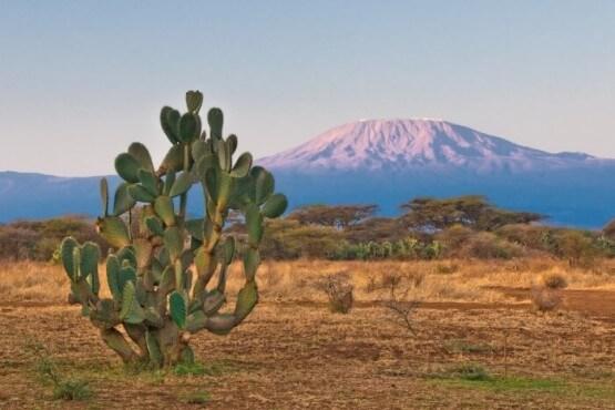 Vistas del Mt. Kilimanjaro