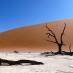 Paisaje de Deadvlei - circuito por Namibia