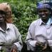 Recolectoras de té - viaje en grupo sur de India