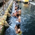 Purificándose en el templo de Tirta Empul - viaje organizado a indonesia