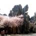 Bosque de Piedra en Kunming