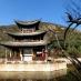 Lijiang - Parque del Dragón
