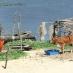Atins y los Lençois - viaje al norte de Brasil
