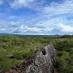 Muro de las lágrimas - Isabela -viaje organizado a Galápagos