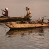 Gambia y Senegal Responsables