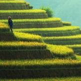 Aventura en Yunnan