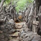 Aventura en Etiopía
